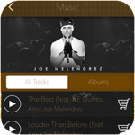 Music Player Feature